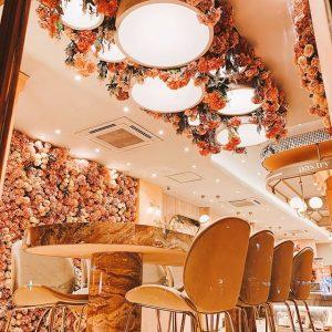 pink mamma - tempat makan baru yang recommended untukmu di